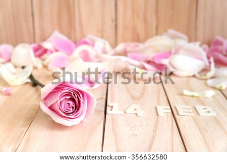 pink roses for valentines day - stock photo