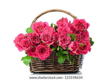 Pink roses in the basket isolated on white background - stock photo