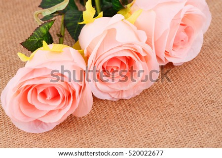 Pink roses on beige canvas background.