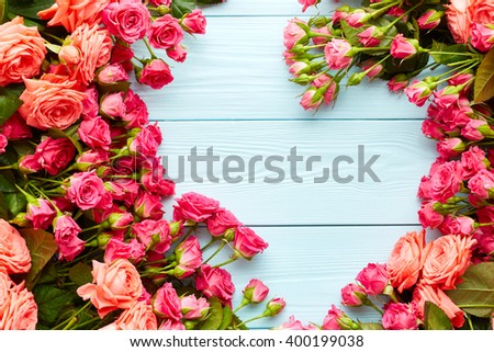 Pink roses on blue wooden background - stock photo