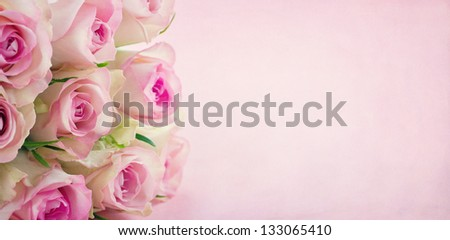 Pink roses on textured pastel background with copy space - stock photo