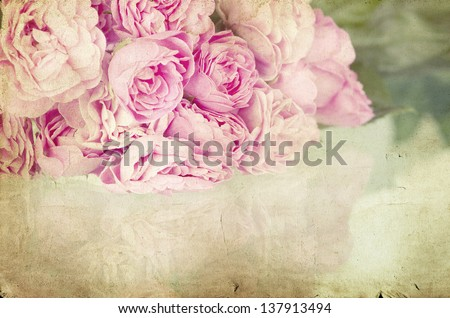 Pink roses on vintage background - stock photo
