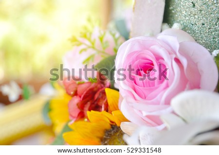 Pink roses with light flare