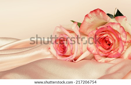 Pink satin and roses on pink background - stock photo