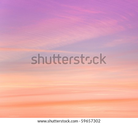 Pink Tender Dawn - stock photo
