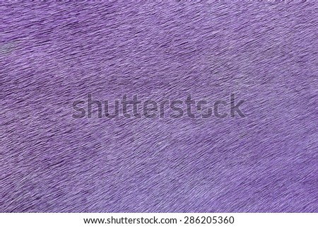 Pink textured cowhide for background - stock photo