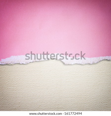 pink torn paper over canvas background - stock photo