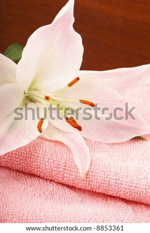 Pink towels, lily on dark brown background
