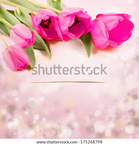 Pink tulips on colorful spring background