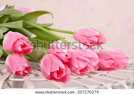 Pink tulips on the table