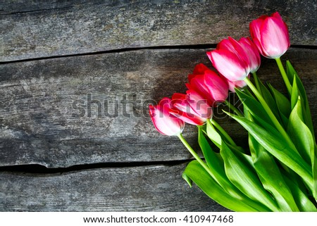 pink tulips on wooden surface - stock photo