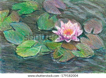 pink water lily, oil pastel - stock photo