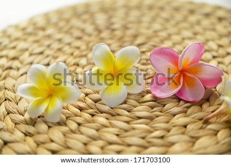 Pink with white frangipani and Wicker placemat - stock photo