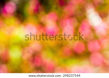 pink, yellow, green defocused bokeh abstract background - stock photo