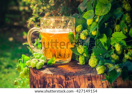 Pint of golden beer on a wooden trunk - stock photo