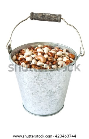 Pinto beans in a metal bucket isolated on a white background - stock photo