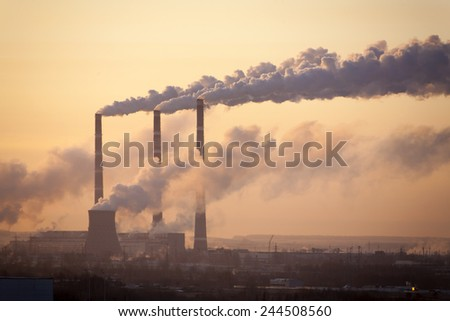 pipe plant against the morning sky - stock photo