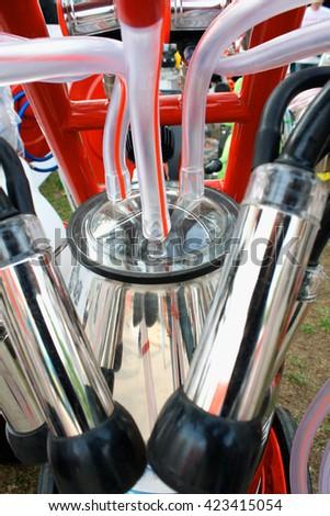 Pipes on mechanized milking equipment - stock photo