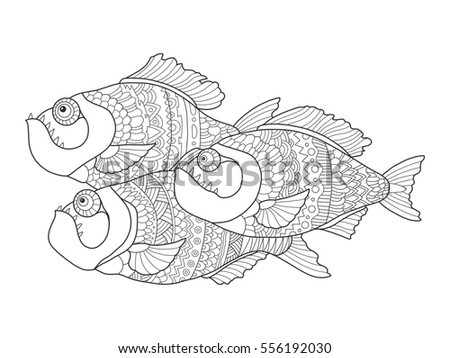 Piranha Fish Coloring Book For Adults Raster Illustration Anti Stress Adult