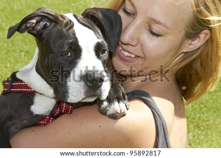 Pit Bull dog breed looking over shoulder