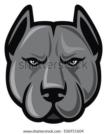 pit bull head (pit bull terrier) - stock photo