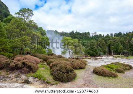 Pits in the ground for food preparation are covered with soil. Hot ground because of volcanic activity on the bank of lake Lagoa das Furnas. - stock photo