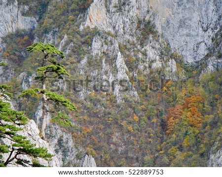 Piva river canyon in Montenegro