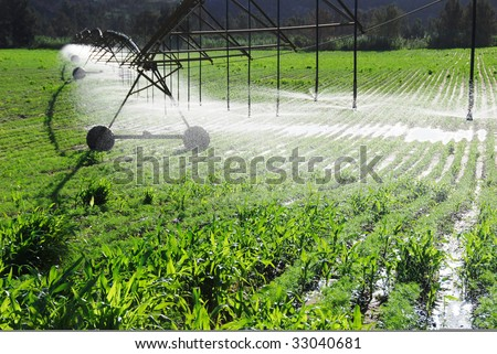 Pivot irrigation system watering a farm field - stock photo