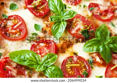 Pizza Margherita Close-up - stock photo