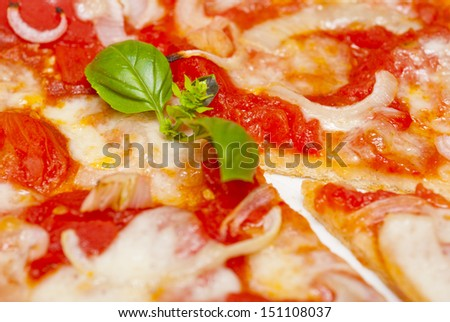 pizza with fresh basil leaves
