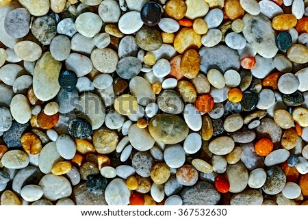 placer sea colored stones and seashells - stock photo