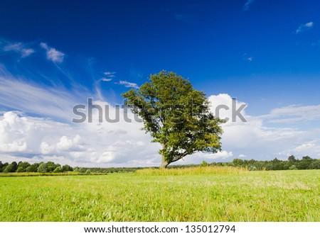 Plain Nature Calm Solitude - stock photo