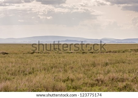 Plain savanna grass field against mountain and cloudy sky background. Serengeti National Park, Tanzania, Africa. - stock photo