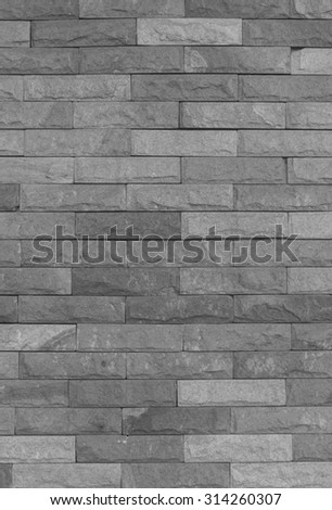 Plain stone wall for background.Black and White