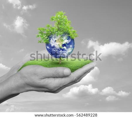 essay on save trees save earth Essay on trees in hindi  save trees quotes in hindi, save trees save earth slogans, save trees save environment slogans english, save trees slogans,.