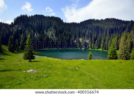 Planina pri jezeru lake with surrounding mountains in Triglav national park, Slovenia