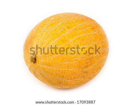 plant and meal a yellow melon on  a white background