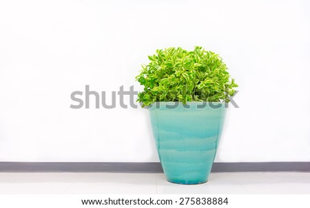 plant decoration in office building - stock photo