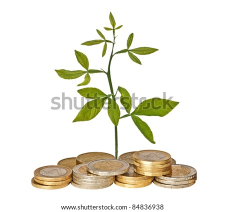 Plant growing from pile of coins