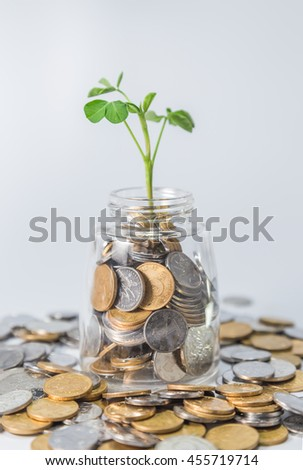 Plant Growing in savings coins - Inverstment and internet concet