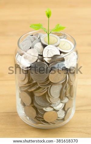 plant growing out of coin money in glass bottle,saving money concept,selective focus,saving money concept - stock photo
