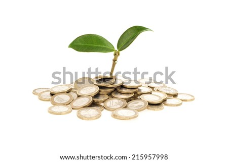Plant growing out of coins representing money saving and investment - stock photo