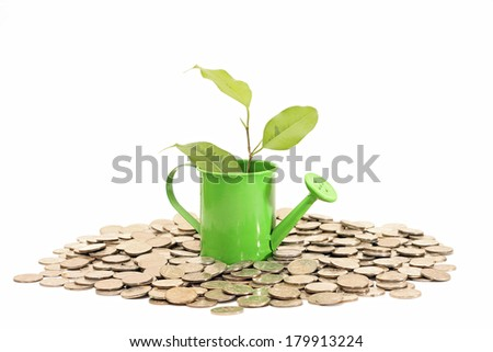 Plant grows from watering can with coins, isolated on white - stock photo