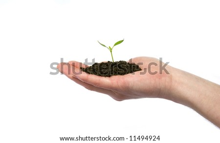 plant in the hand on dark white background