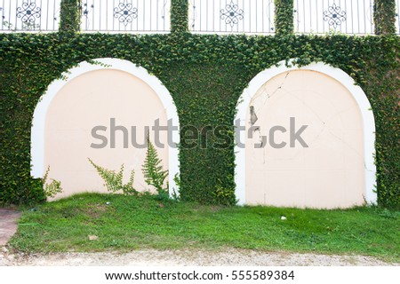 Plant leaves decorate design on the wall for exterior.
