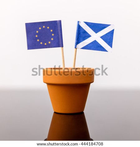 plant pot with scottish and european flag, concept independence and increase, member of eu
