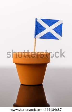 plant pot with scottish flag, concept independence and increase