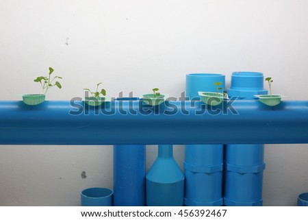 Plant tissue culture in the laboratory. Plant tree in the plastic cones and water pipe. lab tissue in university