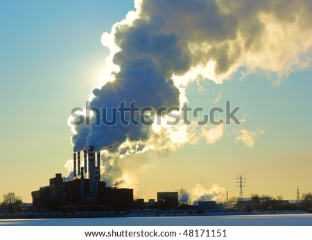 Plant with a puff of smoke - stock photo