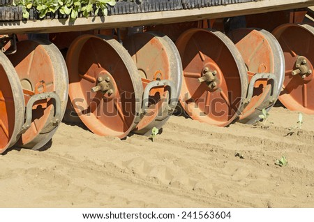 Planting cabbage using a 4 row trans planter behind a tractor in the Umpqua Valley in Oregon - stock photo